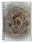 Sorry Said The Frog 2 Spiral Notebook