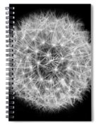 Soul Of A Dandelion Black And White Spiral Notebook