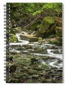 Sounds Of A Mountain Stream Spiral Notebook