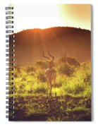 South Africa At Its Finest  Spiral Notebook