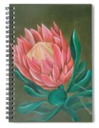 South Africa Protea Spiral Notebook