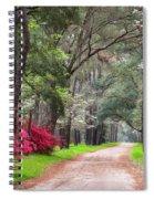 South Carolina Lowcountry Spring Flowers Dirt Road Edisto Island Sc Spiral Notebook