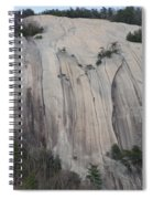South Face - Stone Mountain Spiral Notebook