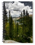 South Lake Through The Pines Spiral Notebook