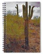 South Mountain6 Spiral Notebook
