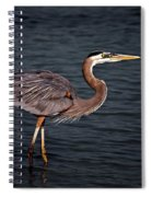 Southern Comfort Spiral Notebook