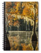 Southern Gold Spiral Notebook