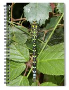 Southern Hawker Spiral Notebook