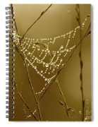 Southern Jewels Spiral Notebook