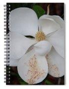 Southern Magnolia Matchsticks Spiral Notebook
