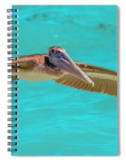 Southern Most Pelican Spiral Notebook