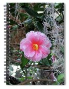 Southern Pink Camellia Spiral Notebook