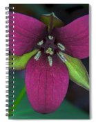 Southern Red Trillium Spiral Notebook