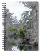 Southern Swamp Spiral Notebook