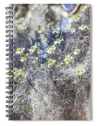 Southern Visions Spiral Notebook