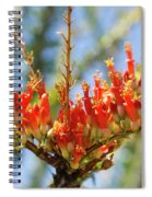 Southwest Ocotillo Bloom Spiral Notebook