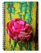 Soutime Rose Against Cracked Wall Spiral Notebook