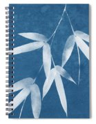 Spa Bamboo 1-art By Linda Woods Spiral Notebook