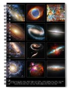 Space Beauties Spiral Notebook