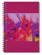 Space On Fire Spiral Notebook