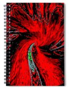 Space Poppy Spiral Notebook