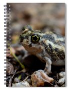 Spadefoot Spiral Notebook
