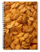 Spaghetti Squash Seeds Spiral Notebook