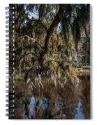 Spainsh Moss Hanging Over Pond On Middleton Place Spiral Notebook