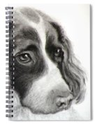 Spaniel Drawing Spiral Notebook