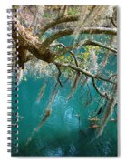 Spanish Moss And Emerald Green Water Spiral Notebook