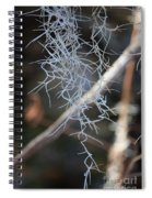 Spanish Moss Spiral Notebook