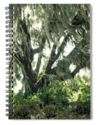 Spanish Moss In Motion Spiral Notebook