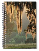 Spanish Moss In The Morning Spiral Notebook