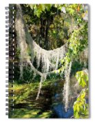 Spanish Moss Over The Swamp Spiral Notebook