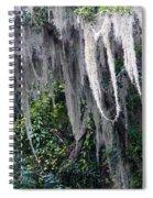 Spanish Moss Panorama Spiral Notebook