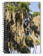 Spanish Moss  Spiral Notebook