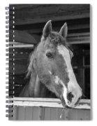 Spara 15066b Spiral Notebook