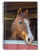 Spara 16066 Spiral Notebook