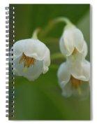Sparkleberry Trio Spiral Notebook