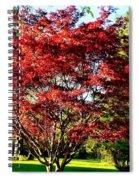 Sparkling Japaneese Maple Tree Spiral Notebook