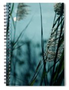 Sparkling Lights Spiral Notebook