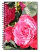 Sparkling Roses Spiral Notebook