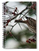 Sparrow Eating Berry Spiral Notebook