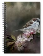 Sparrow In The Garden Spiral Notebook