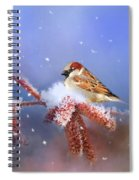 Sparrow In Winter Spiral Notebook