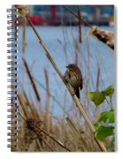 Sparrow On The Cattails Spiral Notebook