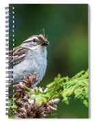Sparrow With Lunch Spiral Notebook