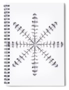 Sparrowhawk 3 Spiral Notebook