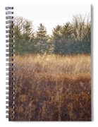 Sparrows Carry Her Name Spiral Notebook