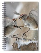 Sparrows Spiral Notebook